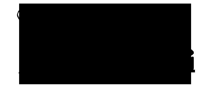 Salon Neferti Logo